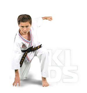 Kids: Taekwondo para niños de 7 a 12 años