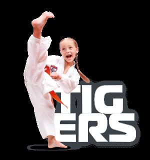 Tigers: Taekwondo para niños de 3 a 6 años