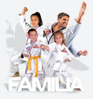 bekho taekwondo familia